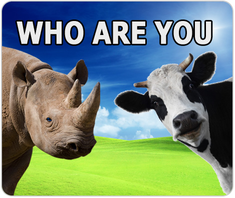 Who-are-you-a-cow-or-a-rhino-waiternomics-martin-fischer